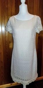 London Times Cream Lace Knit Dress. Sz. 10  Exc.